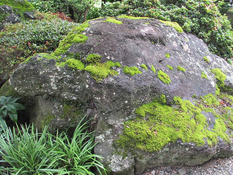 2.亀の石